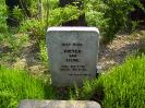 graf van Pieter van Liere